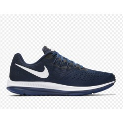 Tenis Nike Winflo 4